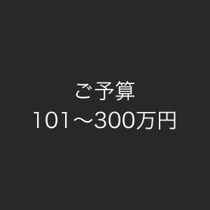 ご予算101~300万円